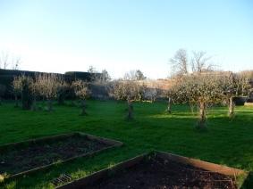 Walled garden pear avenue